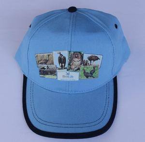 Big 6 Bird Blue Cap