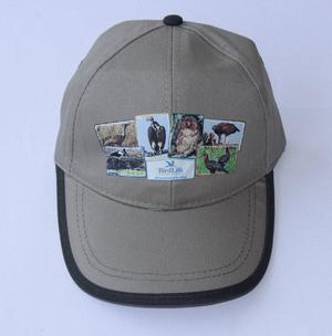 Big 6 Birds Khaki Cap