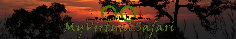 My Virtual Safari